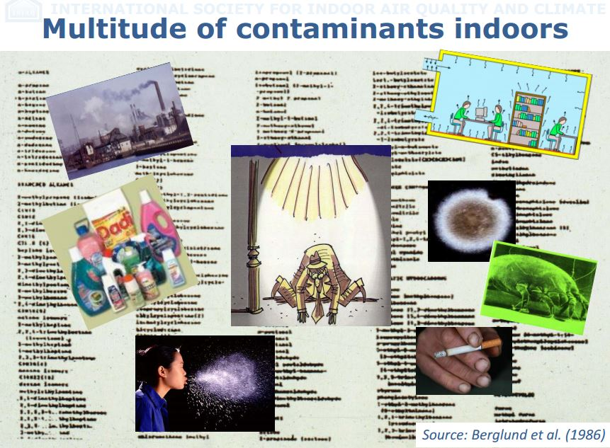 Common Indoor Contaminants