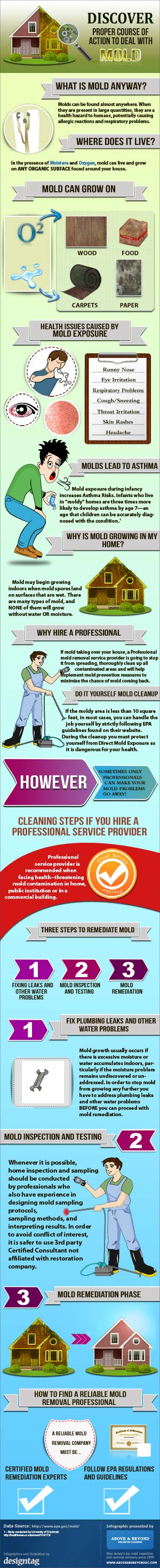 Inforaphic: How to deal with household mold