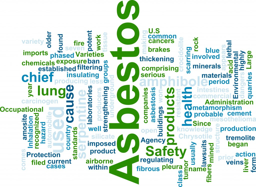 Asbestos Abatement word cloud